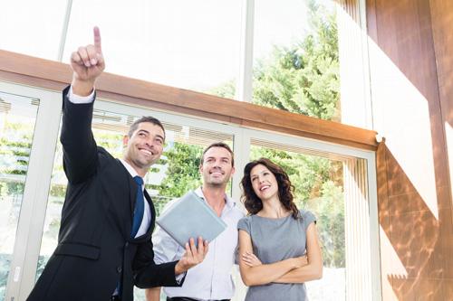 Real_Estate_Professiona_500l