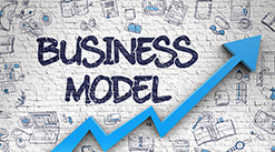 Top Reasons the Niche2Wealth Business Model Works